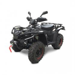 ATV LINHAI DRAGONFLY 300 S 4X4 '18 A4office