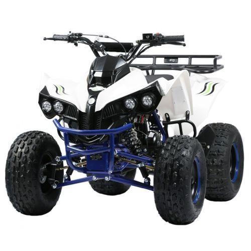 ATV COPII   Team Moto 008 A4office